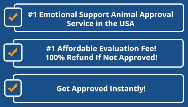 Image of: Esa Emotional Support Animal Certification