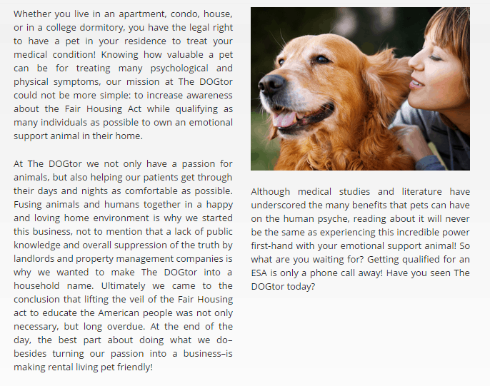 about the dogtor online