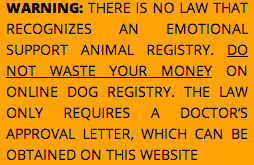 Emotional Support Animal Prescription Letter Examples